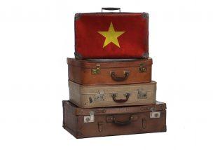 ベトナム 持ち込み禁止